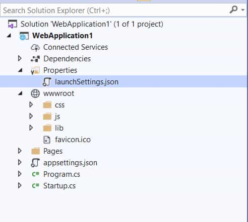 Asp.Net Core wwwroot folder